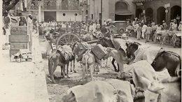 El mercado de San Jacinto y la Plaza del Venezolano 1920. Caracas